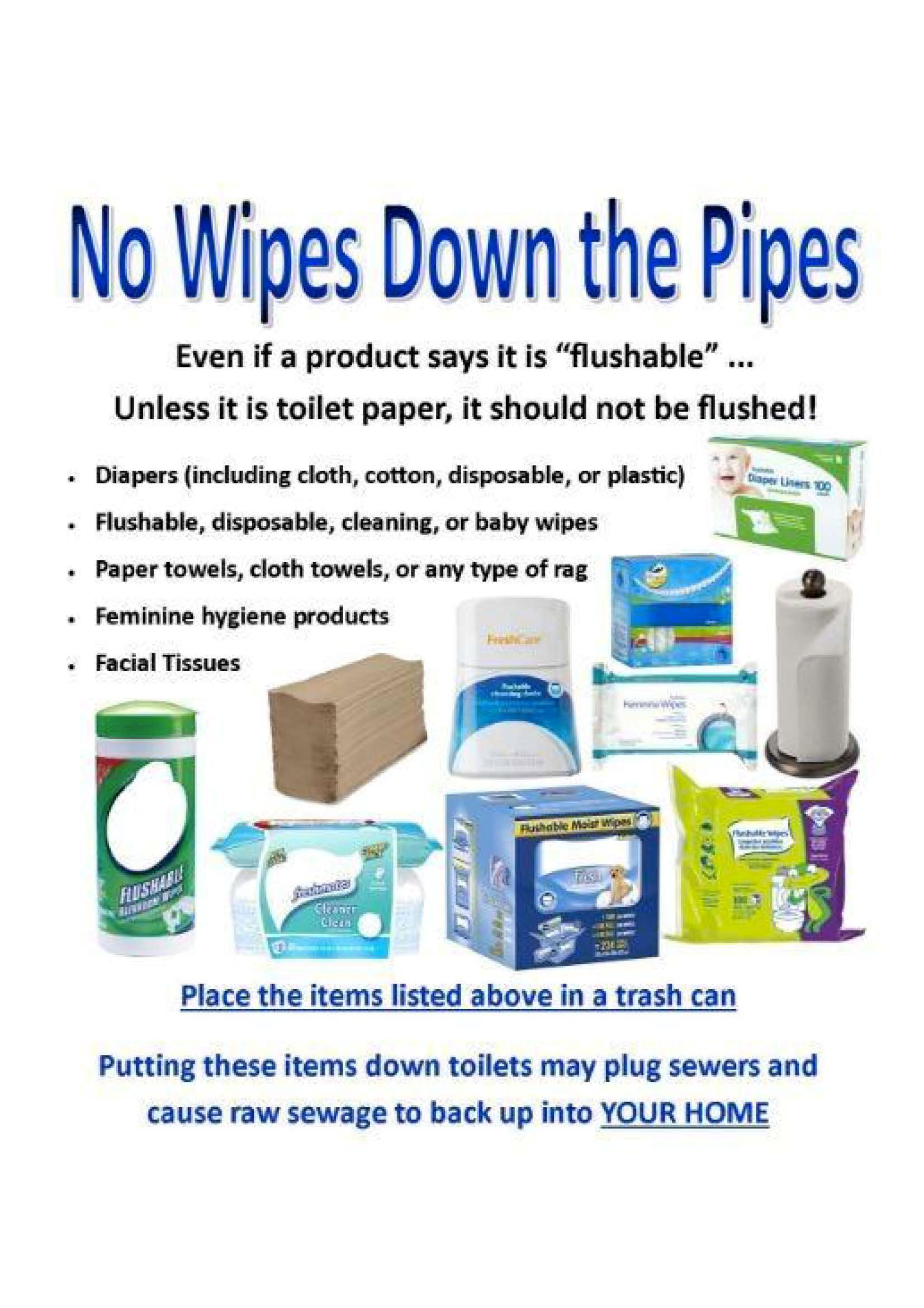 No Wipes Down Pipes (PDF)