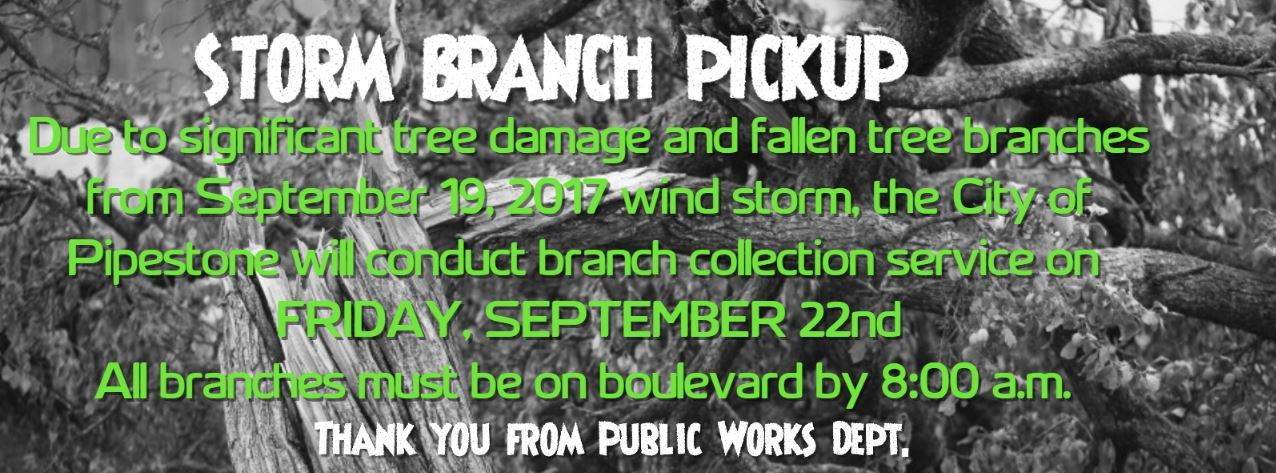 Storm Branch Pick Up 9.22.17