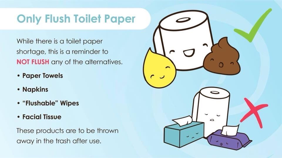 Only Flush Toliet Paper